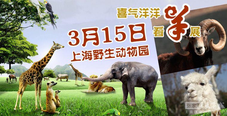 【2015大港城亲子&张家港妈妈圈NO1】3.8庆女人节,上海野生动物园特价亲子游报名开始啦